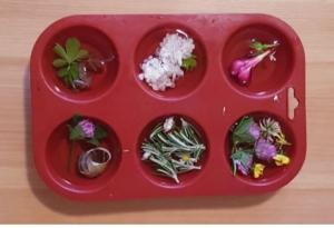 fleurs et eau