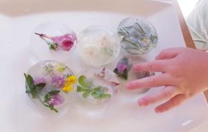 glaçons fleuris démoulés